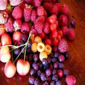 Frutas del Bosque Fragancia