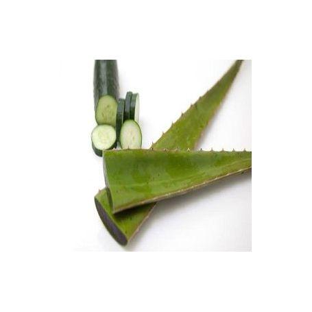 Aloe y Pepino Fragancia